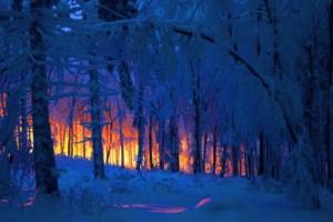 Winter-Fire