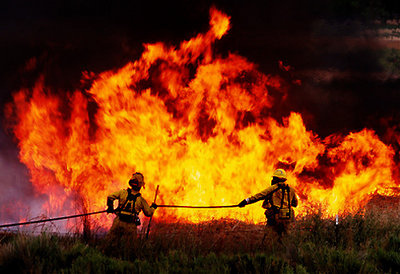 Wildfire-pic